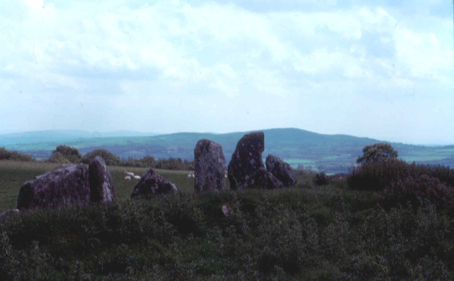 Beltany Stone Circle, Raphoe, Co. Donegal