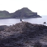 The Giant's Causeway - County Antrim