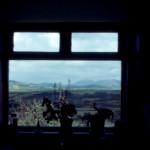"View from ""McFadden"" back window."